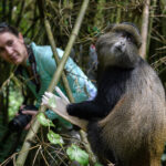Thumbnail of http://Rwanda%20Gorilla%20Trekking